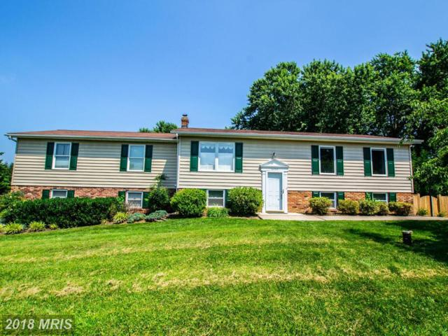 6597 Streamwood Court, Sykesville, MD 21784 (#CR10286522) :: The Gus Anthony Team