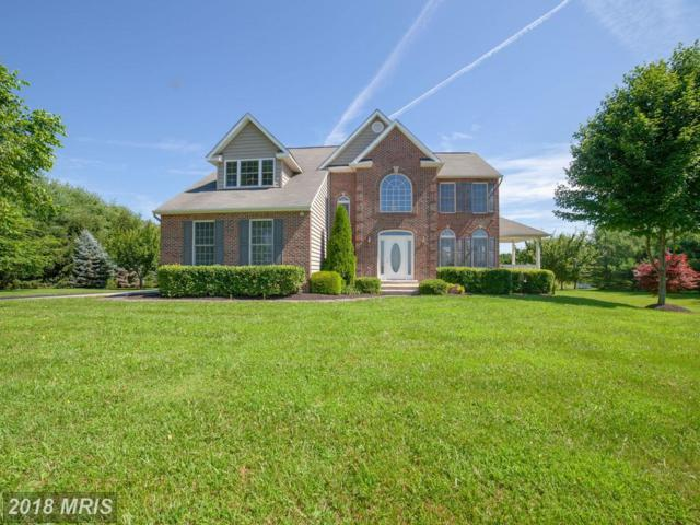 1860 Gillis Falls Road, Woodbine, MD 21797 (#CR10291511) :: Charis Realty Group