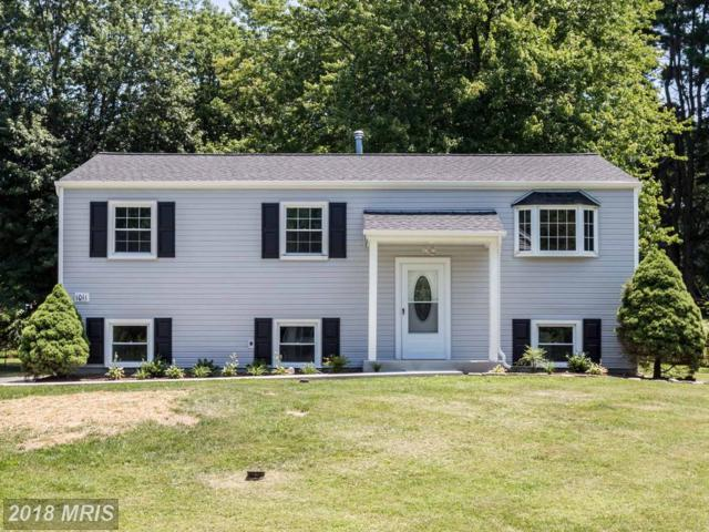 1011 Courtland Drive, Sykesville, MD 21784 (#CR10301381) :: Charis Realty Group