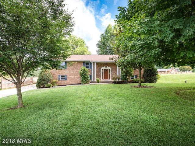 1108 Canterbury Court, Sykesville, MD 21784 (#CR10316690) :: Wes Peters Group