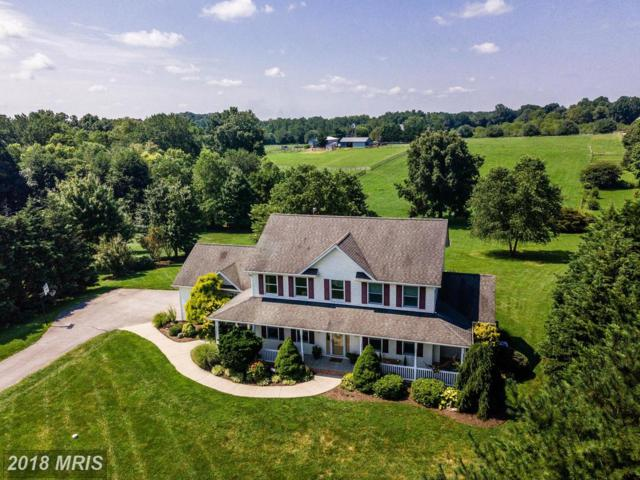 1219 Greens Brook Drive, Westminster, MD 21157 (#CR10319812) :: The Bob & Ronna Group