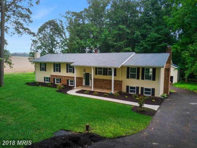 5317 Ridge Road, Mount Airy, MD 21771 (#CR10321061) :: Ultimate Selling Team