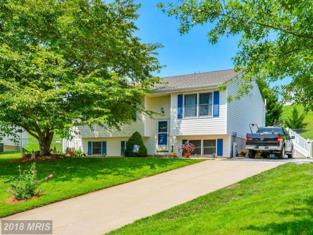 418 Stacy Lee Court, Westminster, MD 21158 (#CR10323418) :: RE/MAX Executives