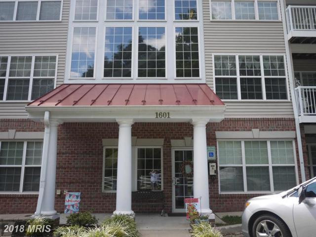 1601 Homeland Drive 2E, Sykesville, MD 21784 (#CR10327809) :: Fine Nest Realty Group