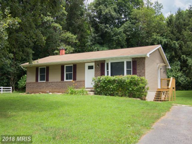205 Surrey Court, Westminster, MD 21157 (#CR10346929) :: Browning Homes Group