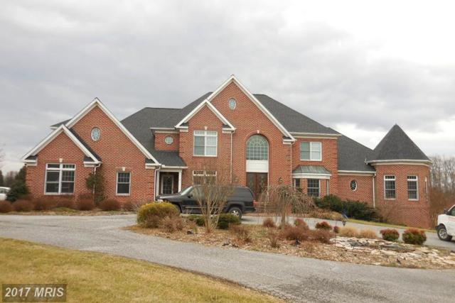 6419 Homebuilder Drive, Mount Airy, MD 21771 (#CR9865806) :: LoCoMusings