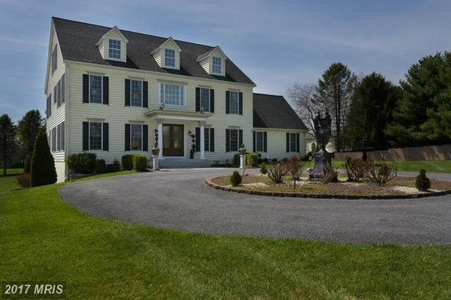 903 Liberty Road, Sykesville, MD 21784 (#CR9913947) :: LoCoMusings