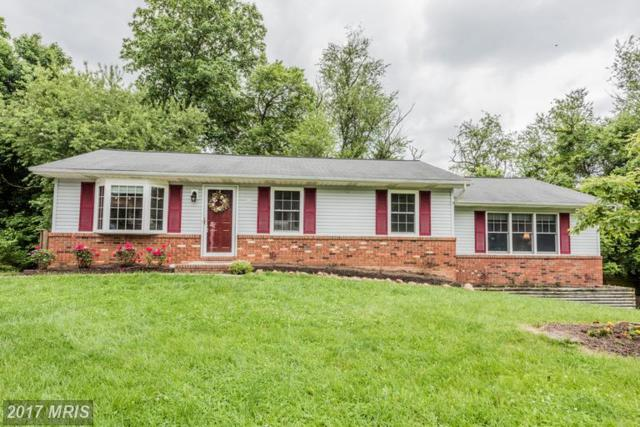 6610 Stirrup Court, Sykesville, MD 21784 (#CR9957780) :: LoCoMusings