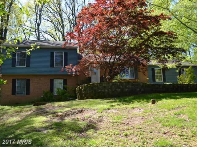5669 French Avenue, Sykesville, MD 21784 (#CR9958506) :: Pearson Smith Realty