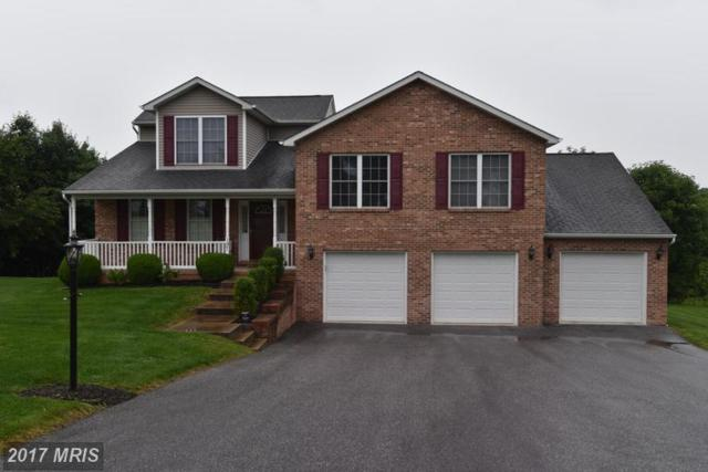 197 Orchard Hill Drive, Westminster, MD 21157 (#CR9969010) :: LoCoMusings