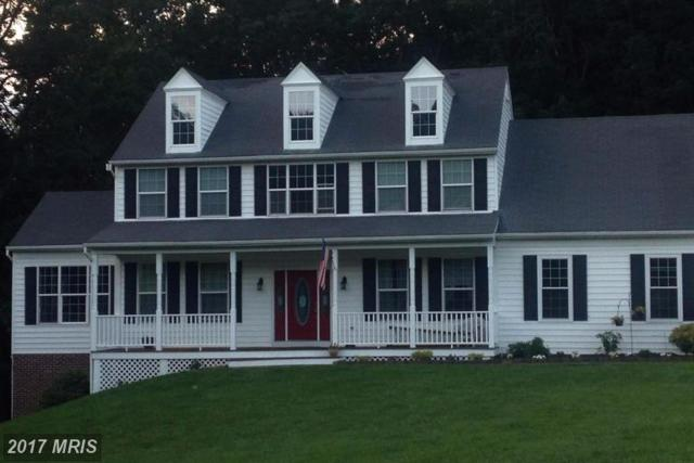 1670 Tulls Overlook Drive, Westminster, MD 21157 (#CR9970159) :: The Bob Lucido Team of Keller Williams Integrity