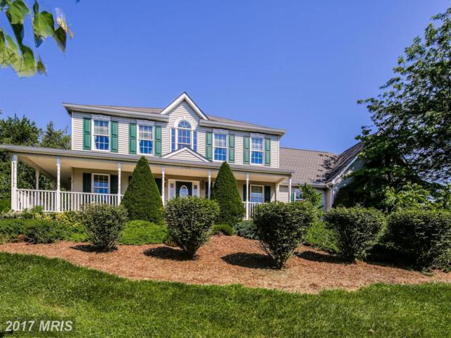 1120 Wet Stone Drive, Westminster, MD 21157 (#CR9977156) :: LoCoMusings