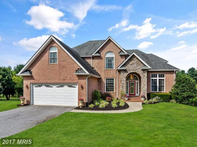 56 Blue Swallow Court, Westminster, MD 21158 (#CR9998274) :: LoCoMusings