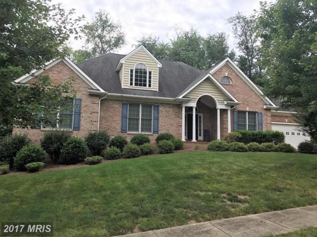 537 Tara Court, Culpeper, VA 22701 (#CU10003282) :: Pearson Smith Realty