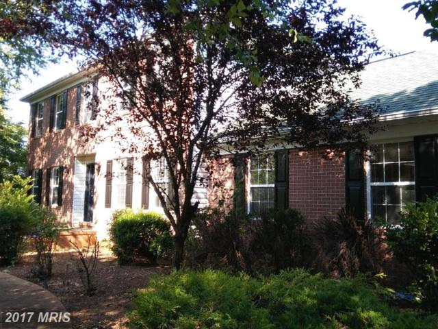 19103 Edgehill Place, Culpeper, VA 22701 (#CU10006734) :: Pearson Smith Realty