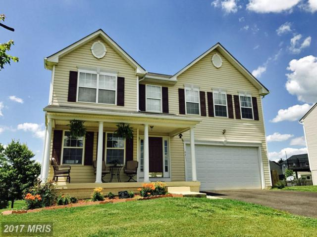 849 Virginia Avenue, Culpeper, VA 22701 (#CU10009359) :: Pearson Smith Realty