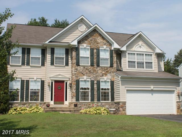 204 Stacey Court, Culpeper, VA 22701 (#CU10015798) :: Pearson Smith Realty