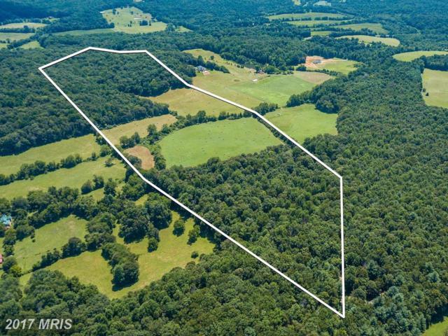 Ellett Lane, Rixeyville, VA 22737 (#CU10020808) :: Pearson Smith Realty