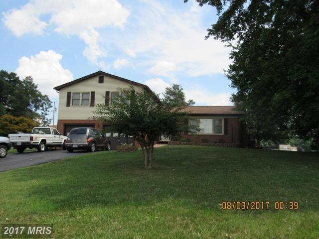 19243 Sycamore Lane, Culpeper, VA 22701 (#CU10023635) :: Pearson Smith Realty