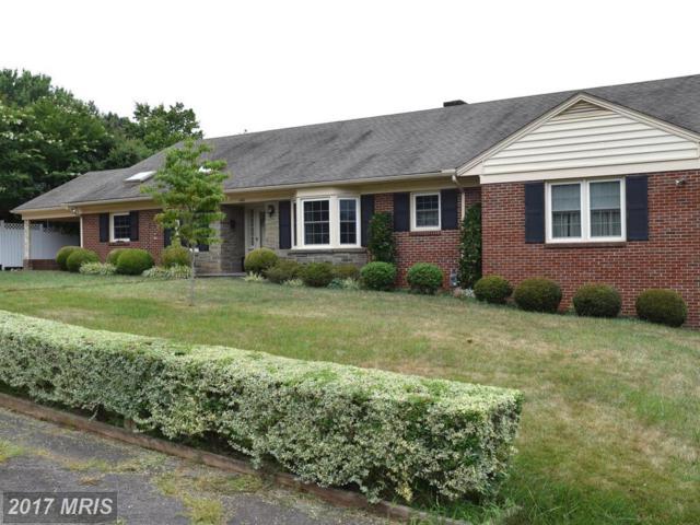 1130 Oaklawn Drive, Culpeper, VA 22701 (#CU10024524) :: Pearson Smith Realty