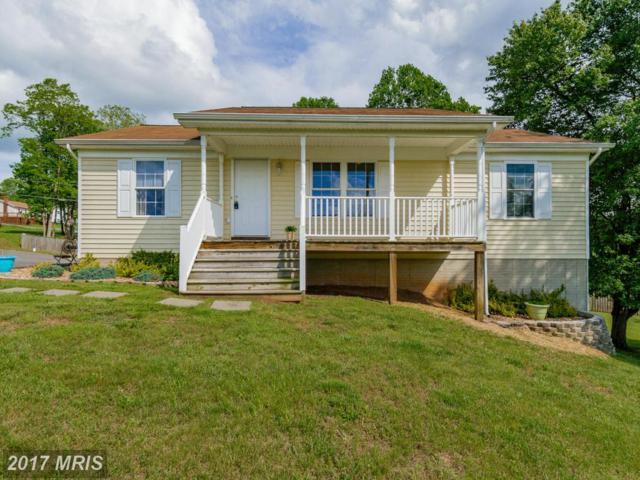 12199 Horseshoe Drive, Culpeper, VA 22701 (#CU10025599) :: Pearson Smith Realty