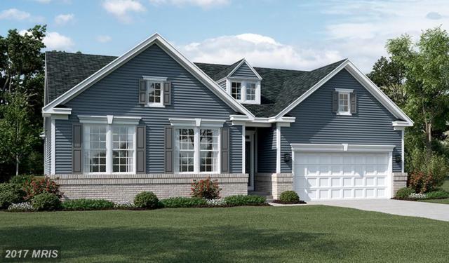 Saddlebrook Road, Culpeper, VA 22701 (#CU10033246) :: Coldwell Banker Elite