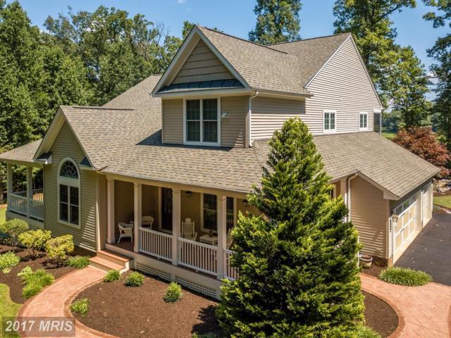 8323 Tinsley Place, Culpeper, VA 22701 (#CU10033400) :: Pearson Smith Realty
