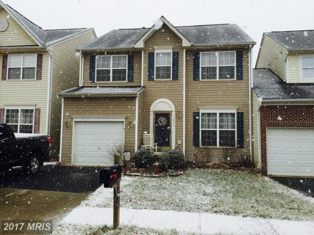 2046 Cranberry Lane, Culpeper, VA 22701 (#CU10035210) :: Coldwell Banker Elite