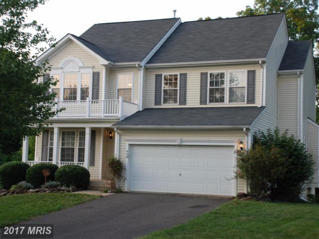 958 Riverdale Circle, Culpeper, VA 22701 (#CU10041333) :: LoCoMusings