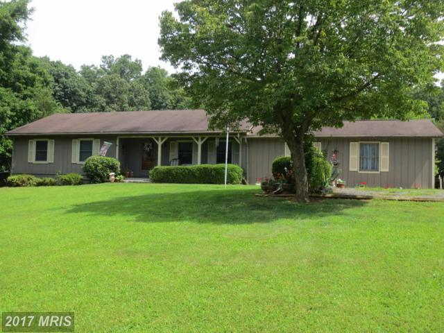 1380 Nelson Lane, Amissville, VA 20106 (#CU10044293) :: Pearson Smith Realty