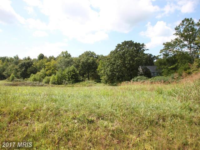 Lot 2 Blackbird Loop, Culpeper, VA 22701 (#CU10046350) :: Pearson Smith Realty