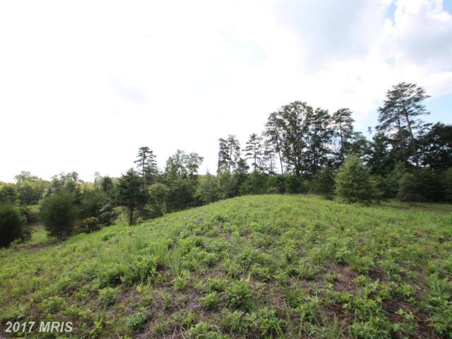 Lot 8 Kinglet Court, Culpeper, VA 22701 (#CU10046355) :: Pearson Smith Realty