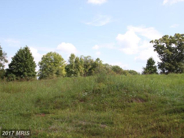 Lot 25 Blackbird Loop, Culpeper, VA 22701 (#CU10046372) :: Pearson Smith Realty