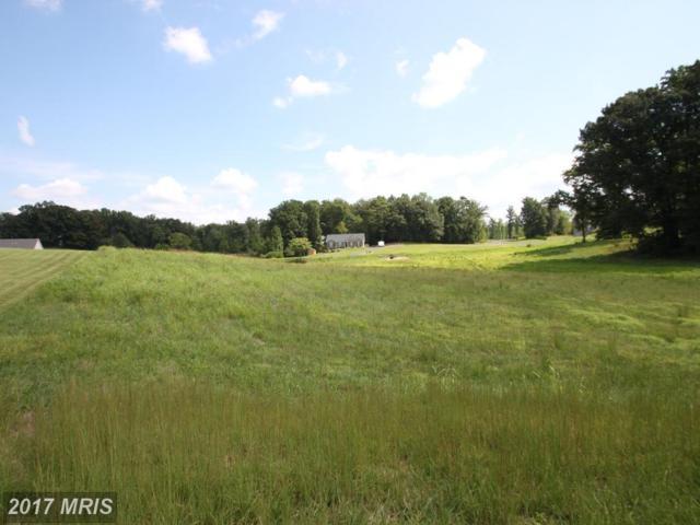 Lot 27 Blackbird Loop, Culpeper, VA 22701 (#CU10046375) :: Pearson Smith Realty