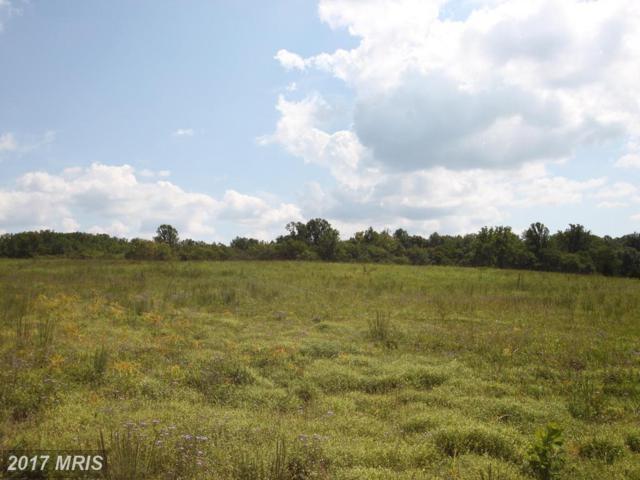 Lot 30 Blackbird Loop, Culpeper, VA 22701 (#CU10046385) :: Pearson Smith Realty