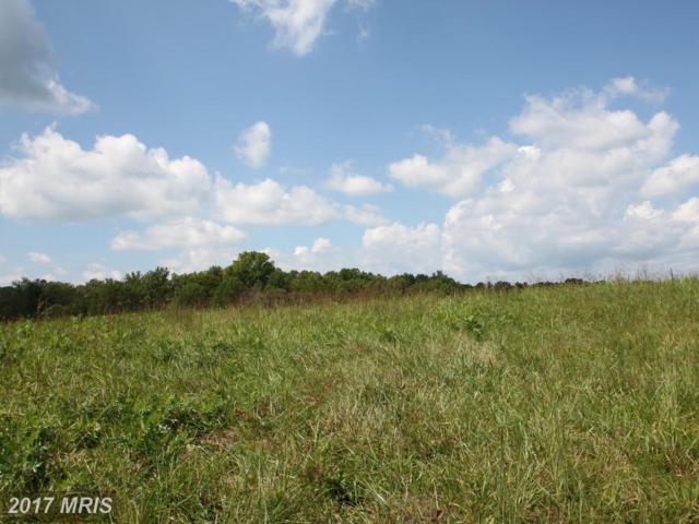 Lot 33 Blackbird Loop, Culpeper, VA 22701 (#CU10046400) :: Pearson Smith Realty