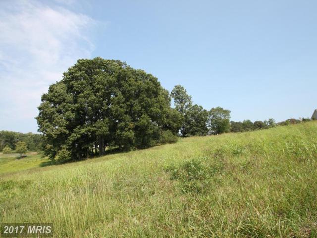 Lot 28 Blackbird Loop, Culpeper, VA 22701 (#CU10048490) :: Pearson Smith Realty