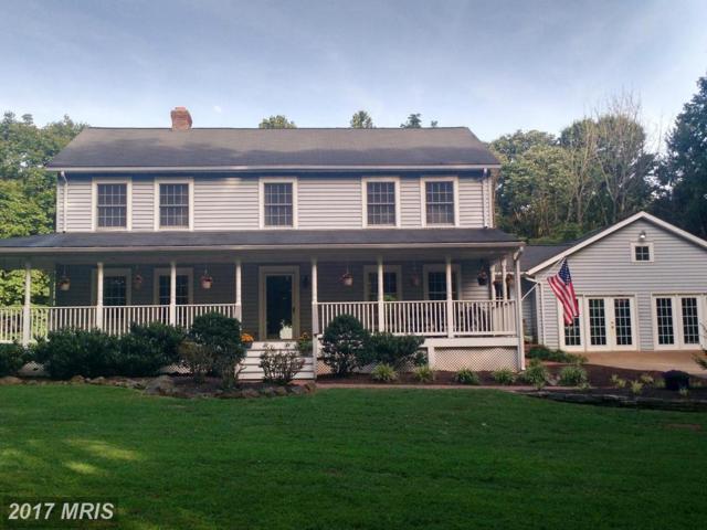 21183 Old Orange Road, Culpeper, VA 22701 (#CU10049853) :: Pearson Smith Realty