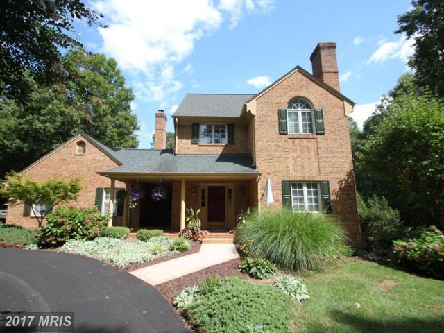 15279 Alphin Lane, Culpeper, VA 22701 (#CU10050851) :: Pearson Smith Realty