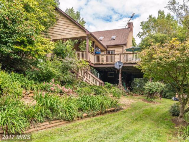 6296 River Garden Lane, Rixeyville, VA 22737 (#CU10058502) :: LoCoMusings