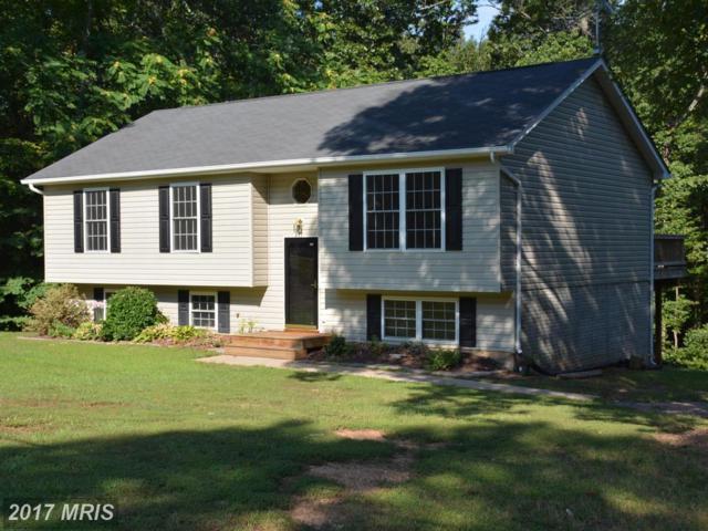 13256 Scotts Mill, Culpeper, VA 22701 (#CU10060125) :: The Nemerow Team