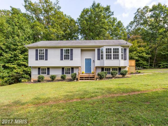 21339 Jennings Road, Richardsville, VA 22736 (#CU10060909) :: Pearson Smith Realty