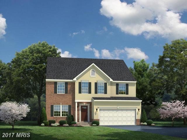 0013 Virginia Avenue, Culpeper, VA 22701 (#CU10066615) :: Pearson Smith Realty