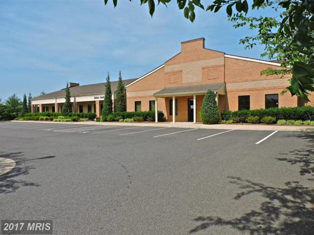19002 Crossroad Parkway, Culpeper, VA 22701 (#CU10066673) :: LoCoMusings