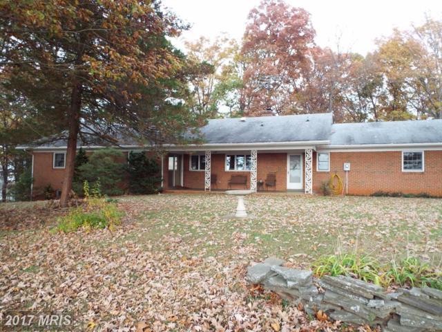 16014 Braggs Corner Road, Culpeper, VA 22701 (#CU10070857) :: Pearson Smith Realty