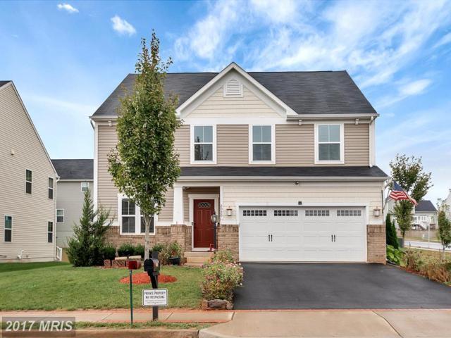 2020 Magnolia Circle W, Culpeper, VA 22701 (#CU10076524) :: Pearson Smith Realty
