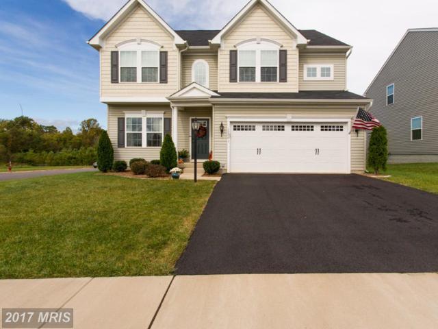 12001 Live Oak Drive, Culpeper, VA 22701 (#CU10079778) :: LoCoMusings