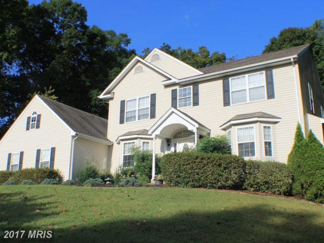 13468 Montavista Lane, Culpeper, VA 22701 (#CU10080968) :: Pearson Smith Realty