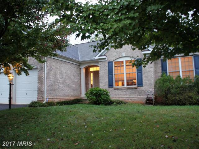 641 Hunters Road, Culpeper, VA 22701 (#CU10082408) :: LoCoMusings