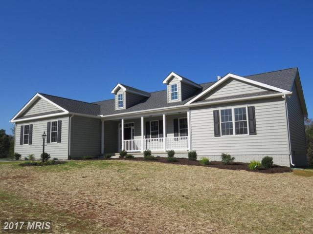 LOT 1 Stonehouse Mountain Road, Culpeper, VA 22701 (#CU10083845) :: Network Realty Group